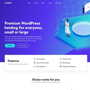 Kinsta---Premium-Web-Hosting